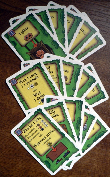 Agricola - karty akcji